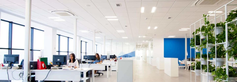 Nuevas instalaciones de Mariscos Apolo en Loja Granada